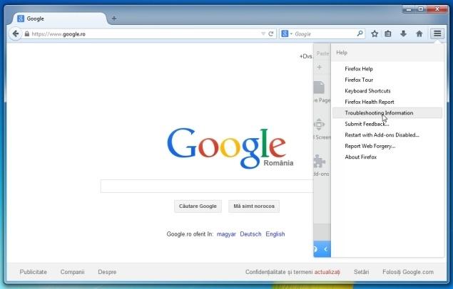 Firefox-Troubleshooting-Information